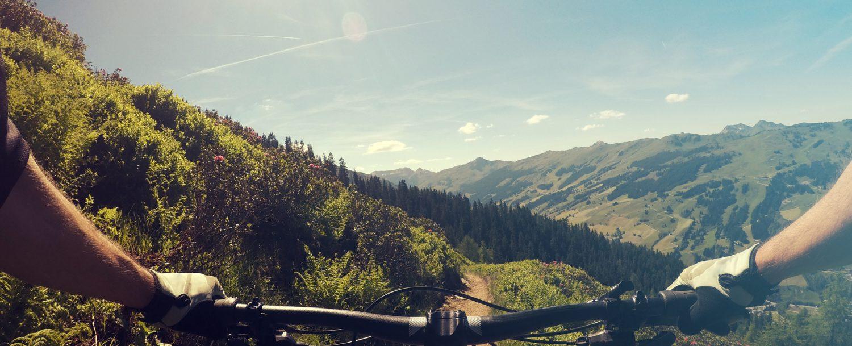 Person biking through the mountains.